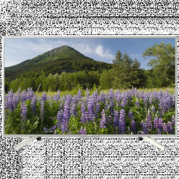 SONY 49'' Televizor KD49XF7077SAEP 4K UHD SMART TV