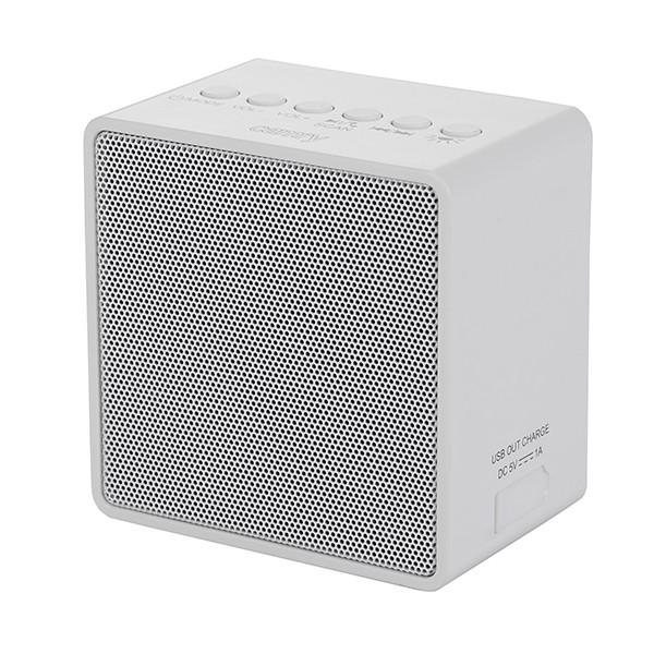 Camry cr1165 radio sa punjivom baterijom