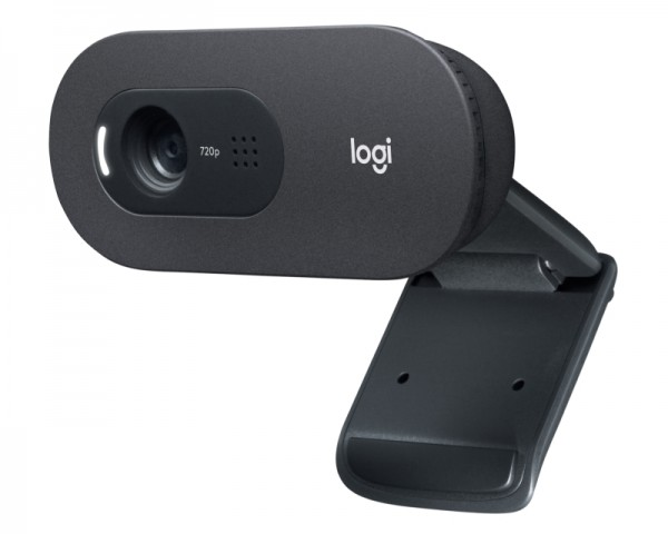 LOGITECH C505 Long Range HD web kamera